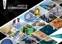 Brochure Invest in Cornouaille (juin 2018)