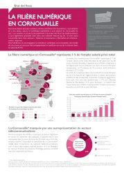 La filière numérique en Cornouaille (Quimper Cornouaille Développement